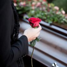 Une rose rouge pour l'être aimé