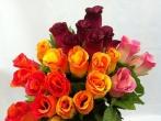Fleurs de deuil artificielles de couleurs vives
